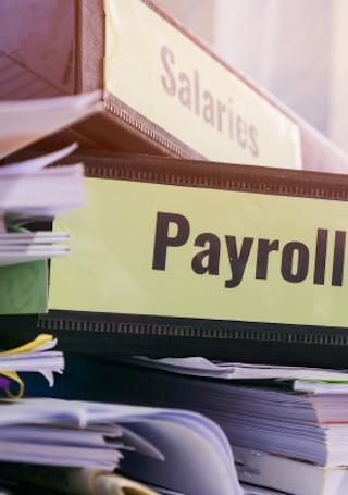 payroll slip image