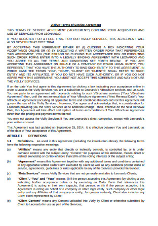 Professional Terms of Service Agreement