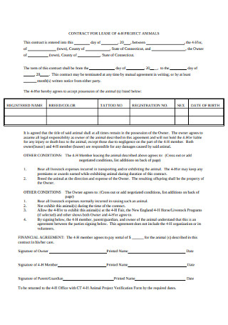 Project Lease Contract Template