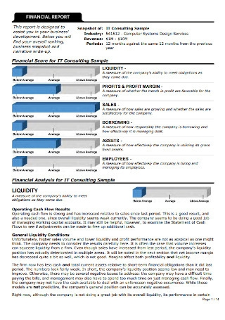 Sample Consulting Financaial Report