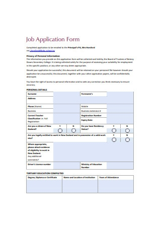 Sample Job Application Form Example