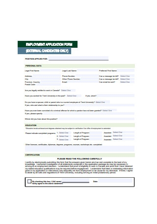 Simple Employment Application Form Example