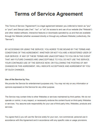 Terms of Service Agreement Format