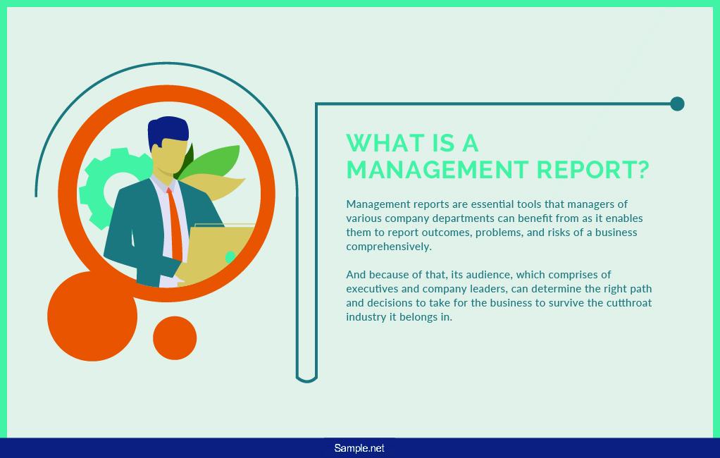 management-report-sample-net-01