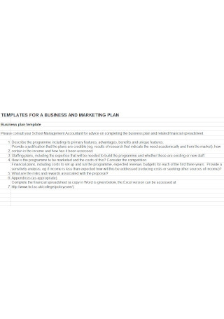 Business and Marketing Plan Template