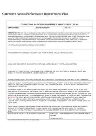 Corrective Action and Performance Improvement Plan