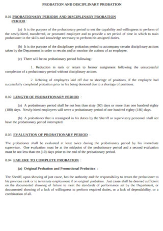 Probation and Disciplinary Probation Template