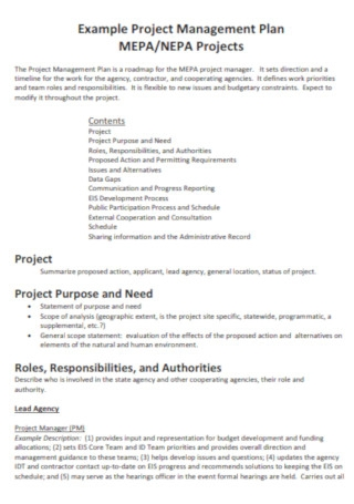 Project Management Plan Example