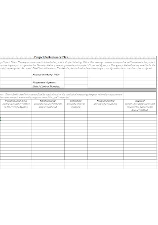 Project Performance Plan Template