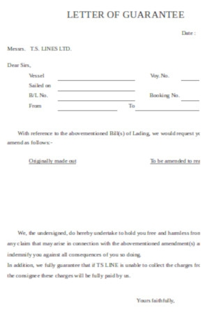 Sample Guarantee Letter Example