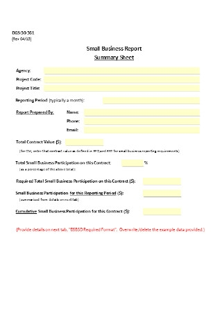 Small Business Report Summary Sheet Template