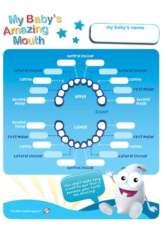 Baby Amazing Mouth Chart Template