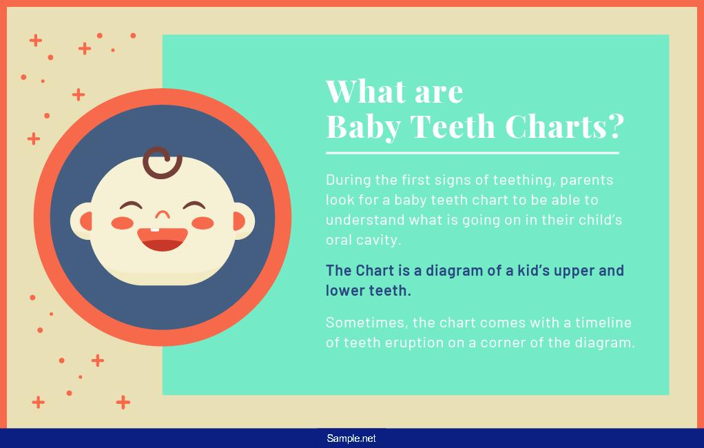 baby-teething-chart-01