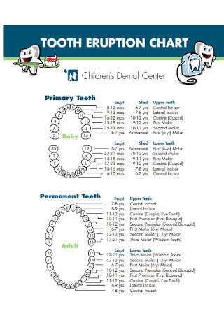 Children Primary Teeth Chart Template