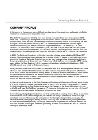 Company Consulting Proposal