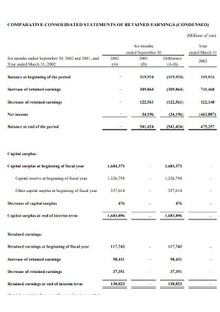 Comparative Consolidated Statement of Earnings