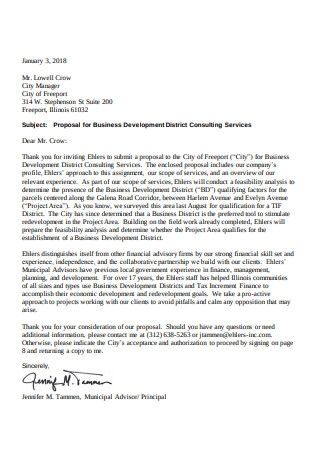 Proposal for Business Development District Consulting Services