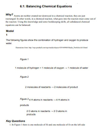 Balancing Chemical Equation Format