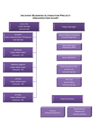 Business Automation Project Organizational Chart