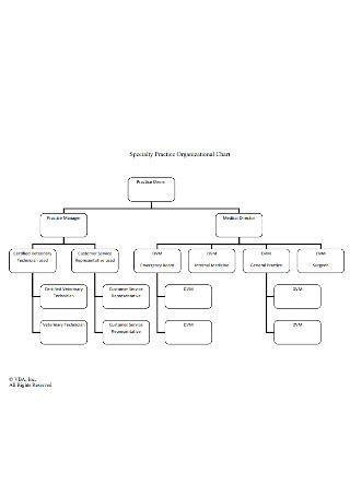 Business Practice Organizational Chart