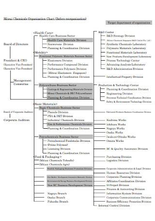Chemical Business Organization Chart