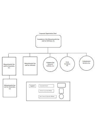 Circle Corporate Organization Chart