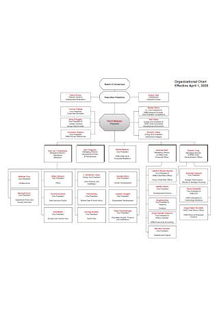 Directors Detailed Organizational Chart