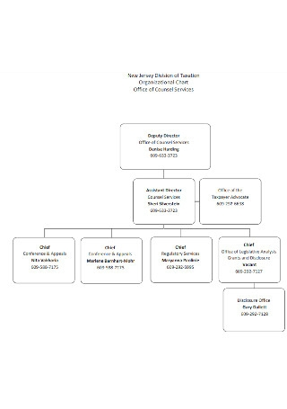 Division of Taxation Organizational Chart