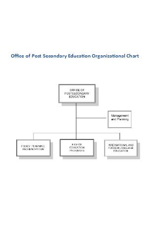 Education Organizational Chart