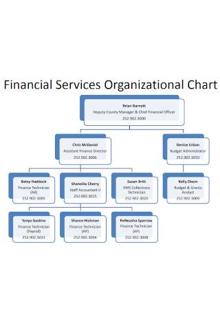 Financial Services Organizational Chart