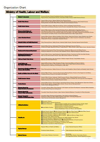 Health Detailed Organization Chart