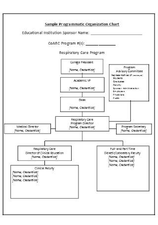 Sample Business Programmatic Organization Chart