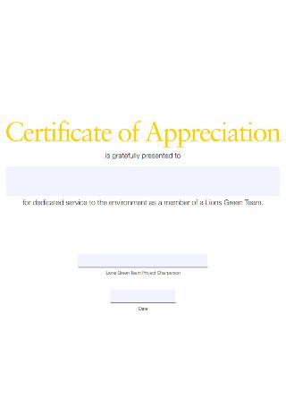 Sample Certificate of Team Appreciation Template