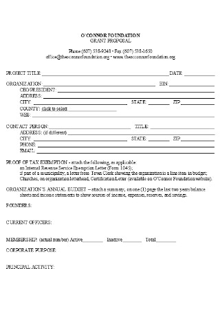 Sample Foundation Grant Proposal Template