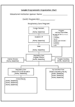 Sample Programmatic Organization Chart