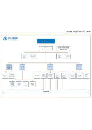 Standard Detailed Organizational Chart