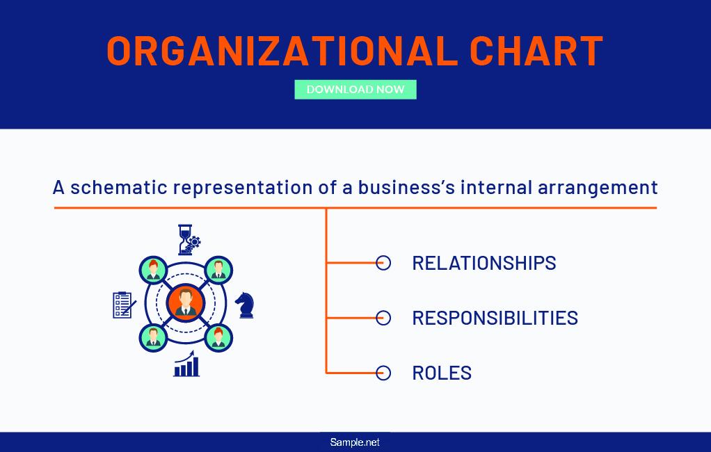 detailed-organizational-chart