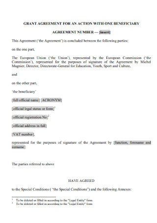Action Grant Agreement Template