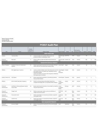 Basic Audit Plan Template