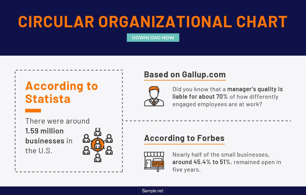 circular-organizational-chart