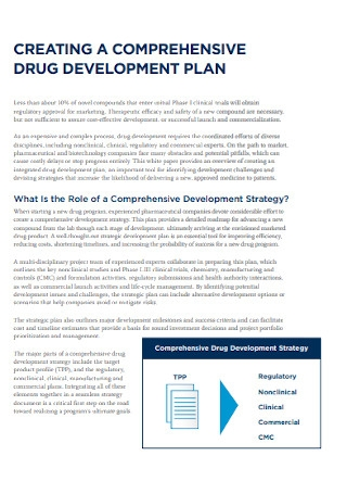 Comprehensive Drug Development Plan