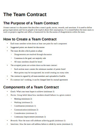 Formal Team Contract