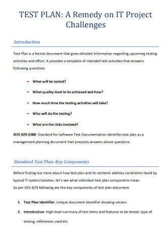 IT Project Test Plan