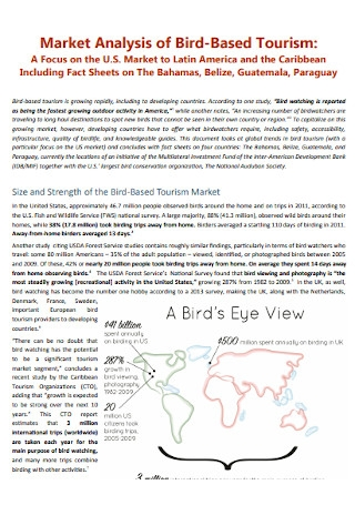Market Analysis of Bird Based Tourism