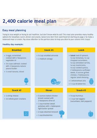 Meal Calorie Plan