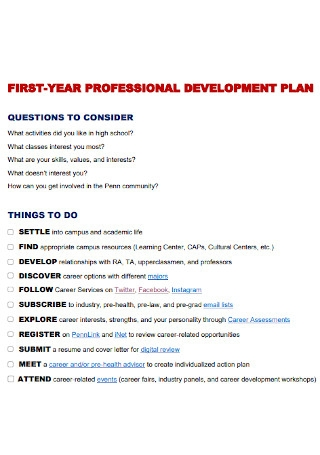 Professional First Year Development Plan