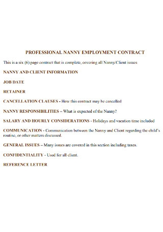 Professional Nanny Employment Contract