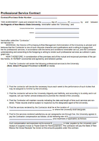 Professional Service Contract Example