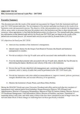 Risk Assessment and Audit Plan