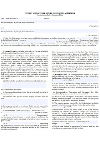 Sales Consult Contract Template